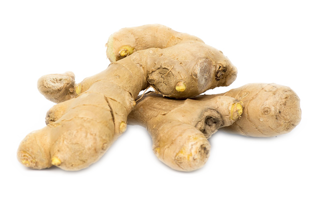 Medicinal herbs Ginger Root ideal for a home apothecary, extract a tincture O