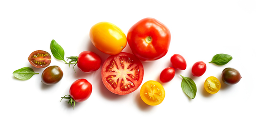 Tomatoes not only contain vitamin C and other nutrients, but they also have a variety of phytochemicals that help prevent health problems. Lycopene is the carotenoid with the highest concentration in tomatoes; it can be found as well in tomato products such as spaghetti sauce and ketchup. Other substances include β-carotene which helps to provide protection against eye diseases like macular degeneration or cataracts Tomatoes are one of our most popular vegetables due to their high levels of vitamins A&C, calcium chloride (which prevents osteoporosis), magnesium (which reduces blood pressure) especially when compared with potatoes or carrots for example because these veggies do not pack nearly as much nutrition per calorie consumed! In