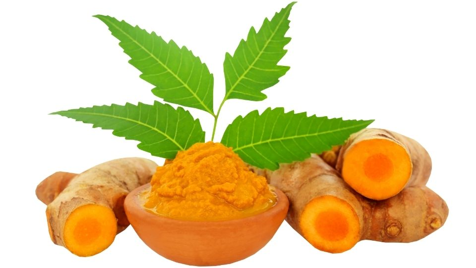 Tincture made from the Turmeric Bulbous Root is a Healthy Alternative Treatment to any Inflammation the Body may be experiencing.